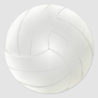 Blank Volleyball Stickers to Hand Write Names