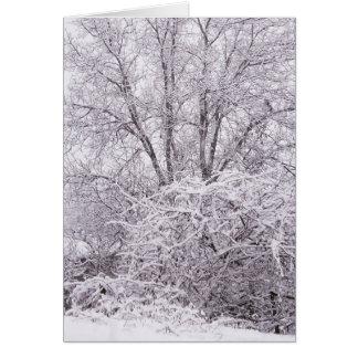 Blank Winter Scene Card