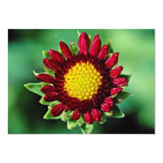 Blanket flower  flowers 13 cm x 18 cm invitation card