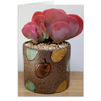 Blaze of Color Notecard - The Perfect Plant