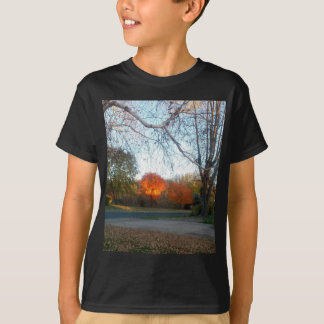 Blaze of Fall T-Shirt