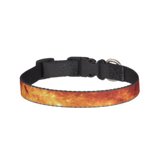 Blaze of Glory | Dog Collar