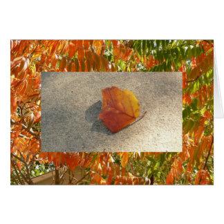 Blazing Sumac / Single Autumn Leaf Card
