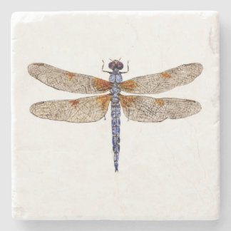 Bleached Skimmer Dragonfly Coaster Stone Coaster