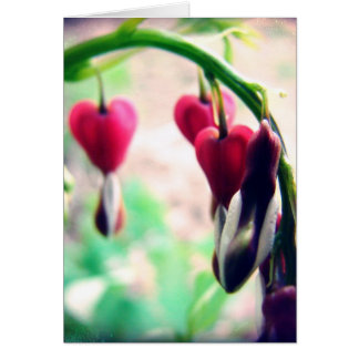 Bleeding Hearts Mother's Day Card
