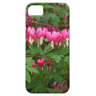 Bleeding Hearts Nature, Photo Barely There iPhone 5 Case