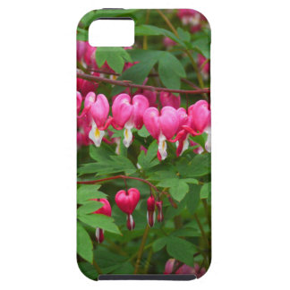 Bleeding Hearts Nature, Photo iPhone 5 Case