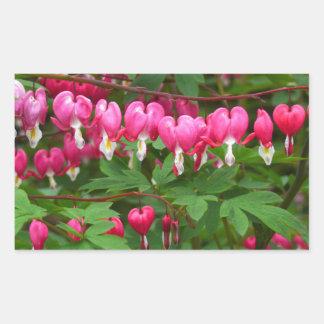 Bleeding Hearts Nature, Photo Rectangular Sticker