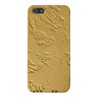 Bling Gold iPhone Case Personalized iPhone 5 Covers