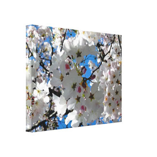 Blissful Blossoms Canvas Prints