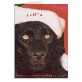 Blk Leopard Santa Card