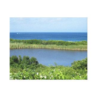 Block Island Pond 1 Canvas Print