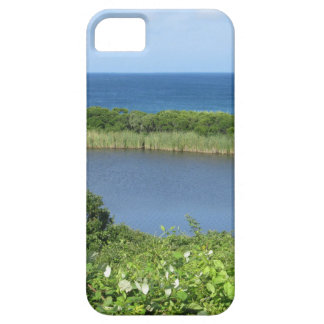 Block Island Pond 1 iPhone 5 Case