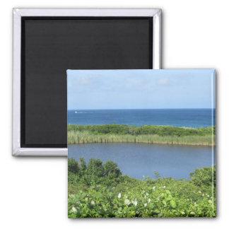 Block Island Pond 1 Fridge Magnet