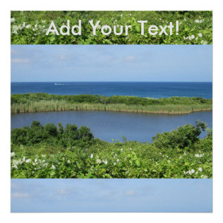 Block Island Pond 1 Poster