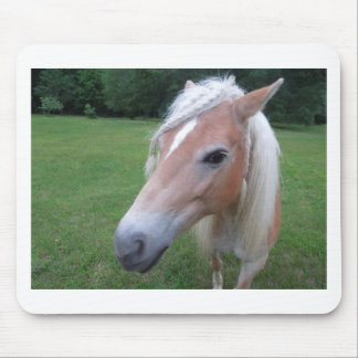 BLONDE HORSE MOUSE PAD