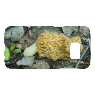 Blonde Wild Morel Mushroom