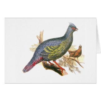 Blood Pheasant Card