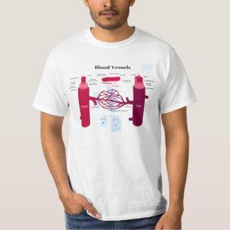 Blood Vessels Arteries Capillaries Veins Diagram Shirts
