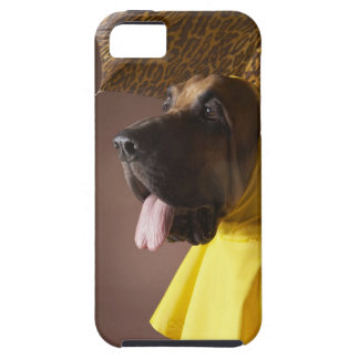 Bloodhound dog. iPhone 5 covers