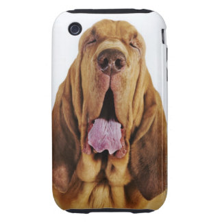 Bloodhound (St. Hubert Hound) with closed eyes, Tough iPhone 3 Cases