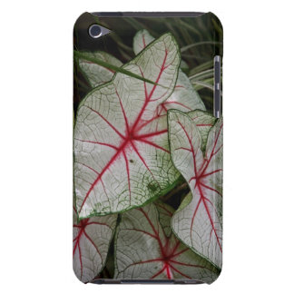 Bloodleaf Case-Mate iPod Touch Barely There Case