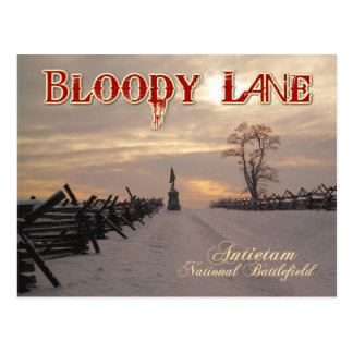 Bloody Lane, Antietam National Battlefield, MD Postcard