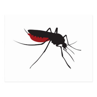 Bloody mosquito postcard