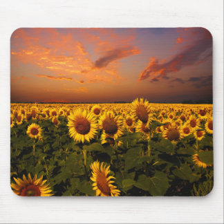 Bloody Skies Mouse Pads