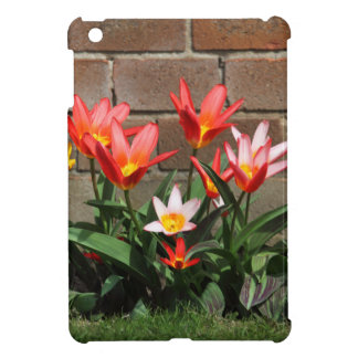 bloom case for the iPad mini