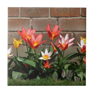 bloom ceramic tile
