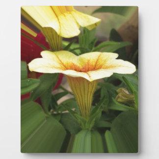 Bloom cups plaque