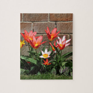 bloom jigsaw puzzle