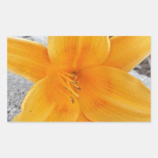 Bloom Rectangular Sticker