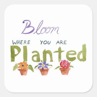 Bloom Square Sticker