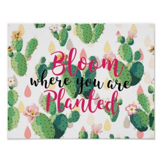 Bloom Where You Are Planted Cactus Print Poster