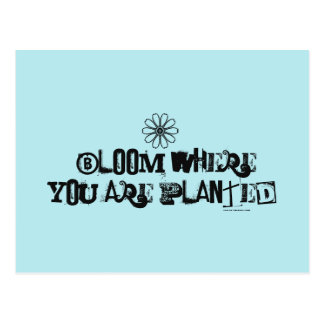 Bloom where you are planted. postcard