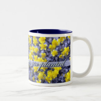 Bloom Where You Are Planted, Yellow Wildflowers Mug