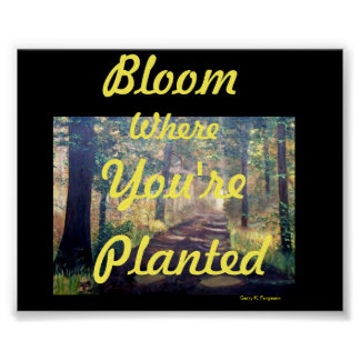 """BLOOM WHERE YOU'RE PLANTED"" POSTER"