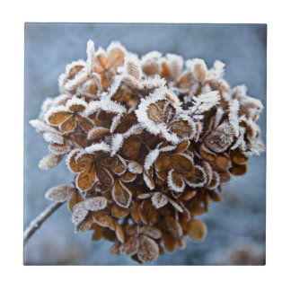 Bloom with ice crystals ceramic tile