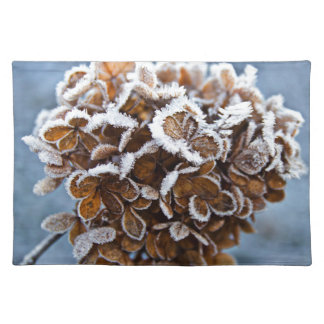 Bloom with ice crystals placemat