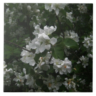 Blooming apple tree Ceramic Tile