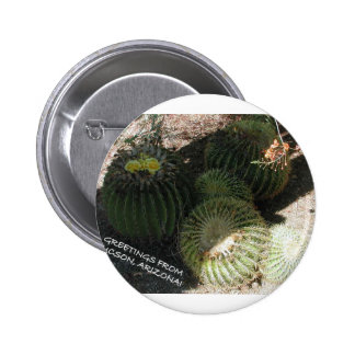 BLOOMING BARREL CACTI AND ASSORTED PHRASES BUTTON
