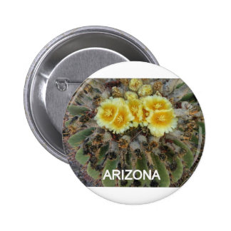 BLOOMING BARREL CACTI AND PHRASES PINS