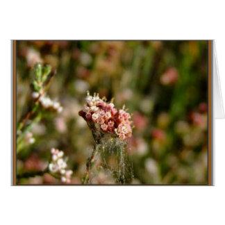Blooming beautiful card