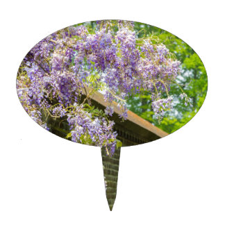 Blooming blue wisteria hanging over long brick wal cake toppers