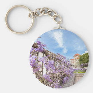 Blooming blue Wisteria sinensis on fence in Greece Basic Round Button Key Ring