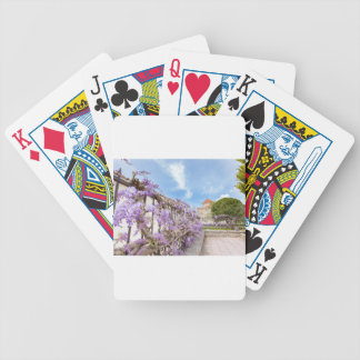 Blooming blue Wisteria sinensis on fence in Greece Poker Deck