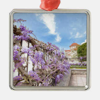 Blooming blue Wisteria sinensis on fence in Greece Silver-Colored Square Decoration