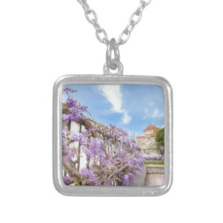 Blooming blue Wisteria sinensis on fence in Greece Silver Plated Necklace